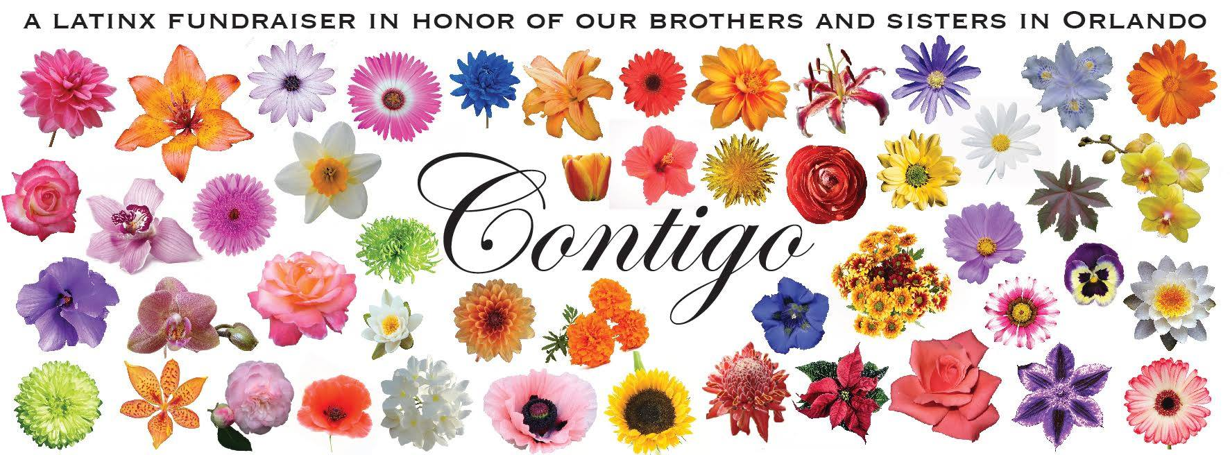 Contigo's flyer, designed by Karoline Hatch, features 49 flyers -- one for each of the clubgoers who died.