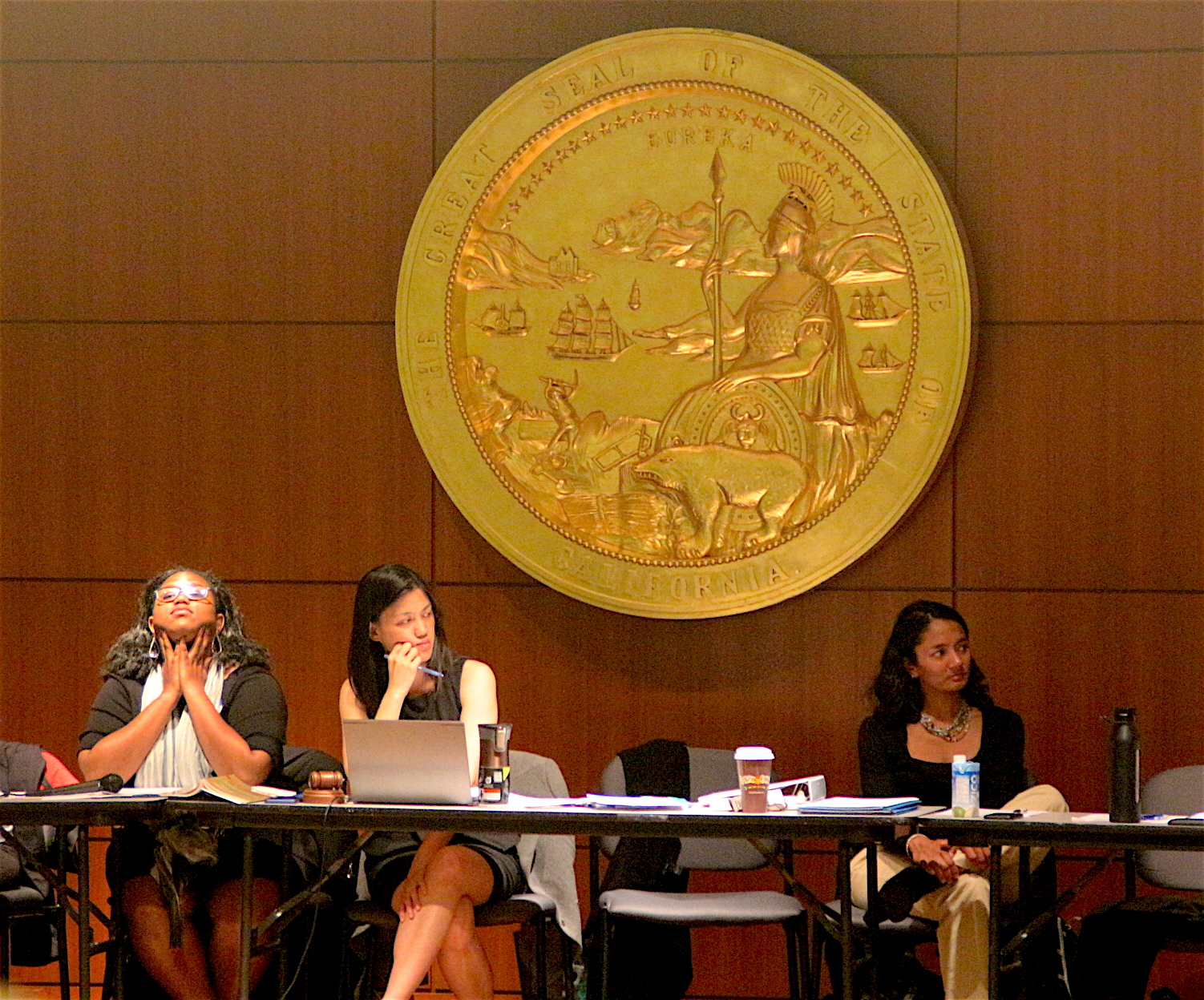 DCCC Chair Cindy Wu listens to members debate on possible revote. Photo by Sana Saleem